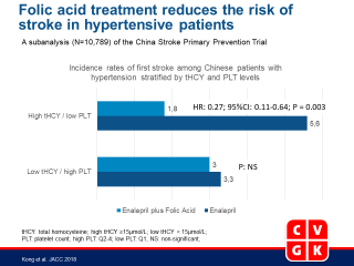 Platelet Count Affects Efficacy of Folic Acid in Preventing First Stroke