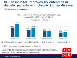 Cardiovascular and Renal Outcomes With Canagliflozin According to Baseline Kidney Function: Data from the CANVAS Program